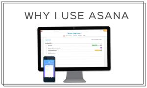 Why I Use Asana